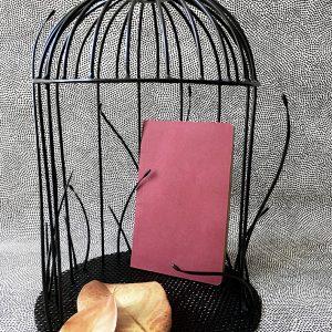 5 petite cage tiges - anouchka potdevin